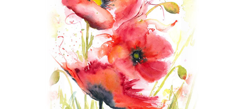 Desiderata Poppies