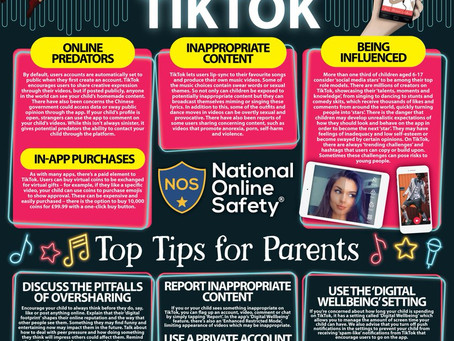 Tik Tok Safety Guide