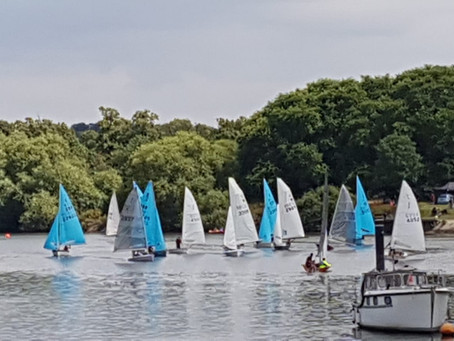 TYC Regatta 2019 Update