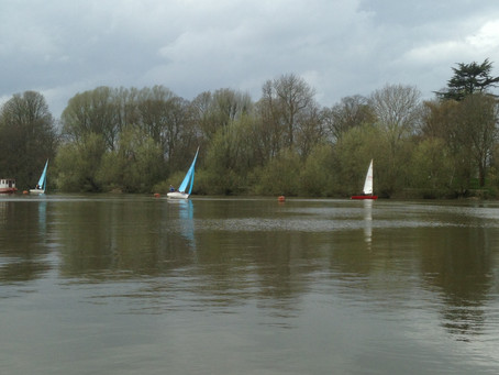 Sailors Made it Back from Long Distance Race to The Anglers