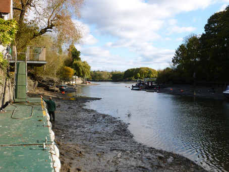 Annual River Thames Draw Off and TYC Work Parties