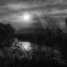Morning Along The Thames