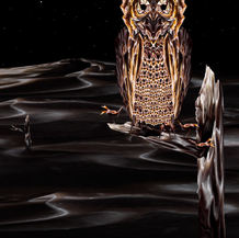 The Therapeutic Owl