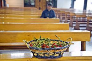 Patriciello e quei pomodori sull'altare
