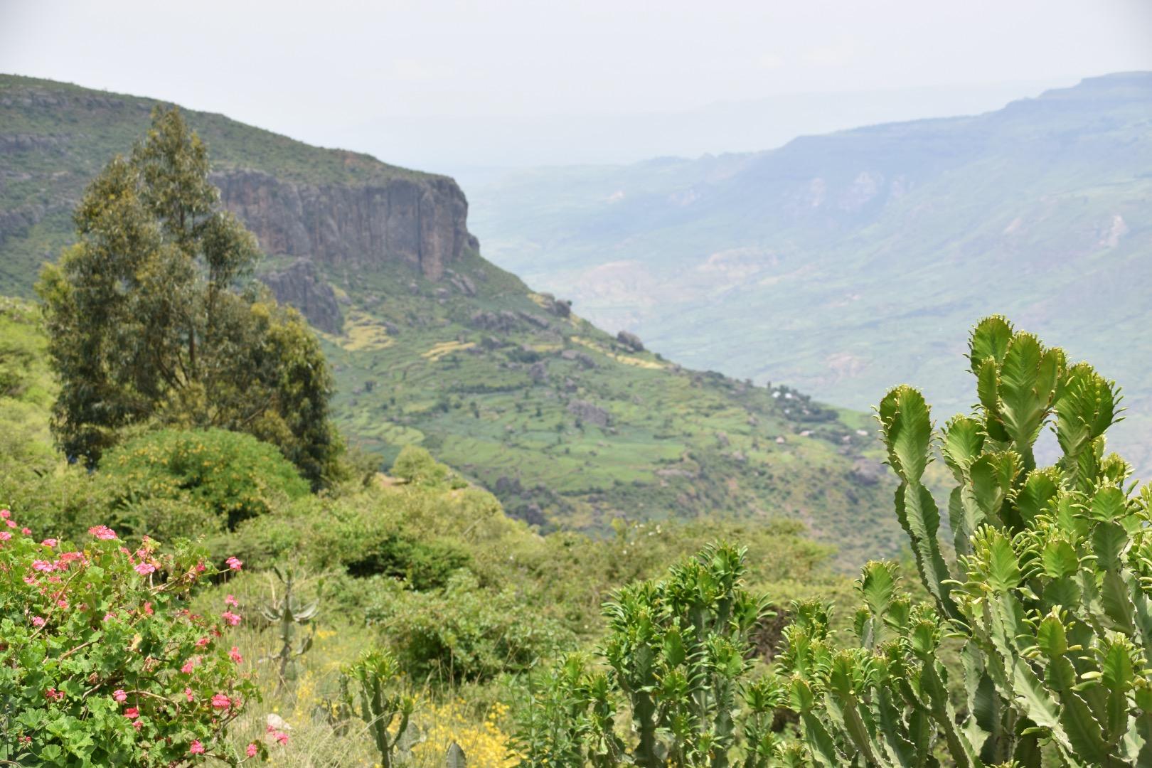 Amhara region, Ethiopia