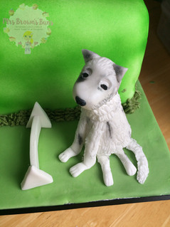 Flyball Themed Birthday Cake