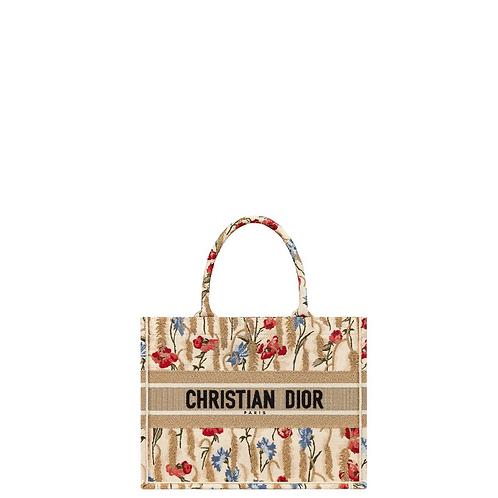 Сумка Christian Dior 031