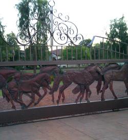 horsesIMAG0704.jpg