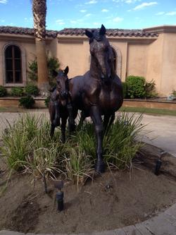 horses after_edited.JPG