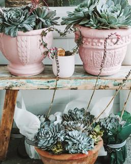 Chalk Painted Pots
