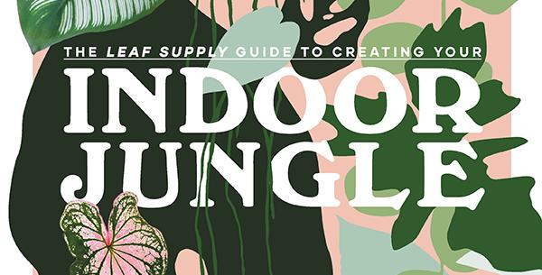 Book - Indoor Jungle