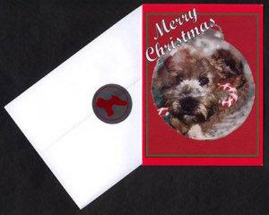 WIN Red Christmas Cards