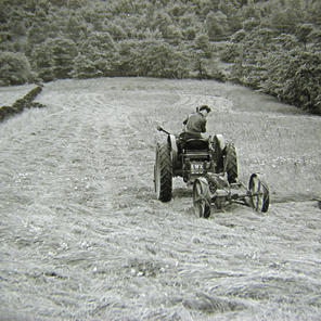 Tractor, location unknown