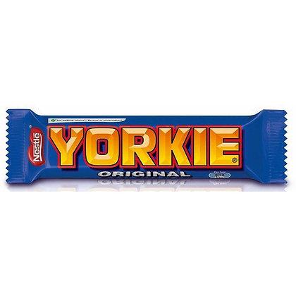 Yorkie x36