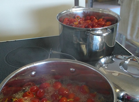 Rosehip Jelly - Another Maritime Recipe