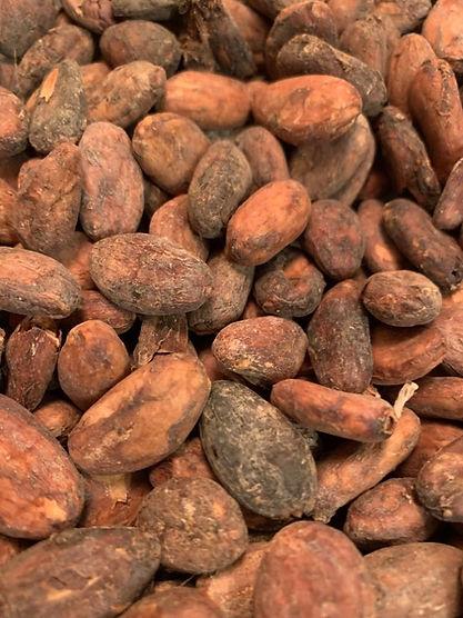 fève de cacao.jpg