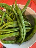 green beans nov 2020.JPG
