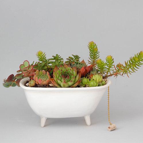 květináč- Vana