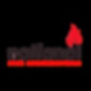 National Fire Construction - Logo (1).pn