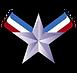 HOF-StarCircle.png