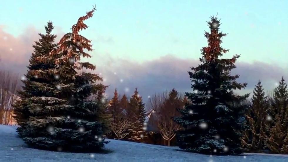 Snow Particles