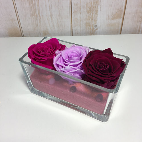 Coupe TRIO, rose/violet