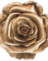 Rose or.jpg