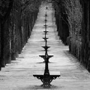 """Avenue"""
