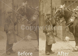 Horse Photo Restoration, comparison