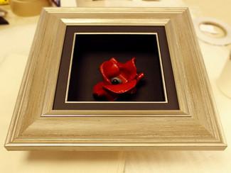 Frame My Poppy - Bespoke Box Frames
