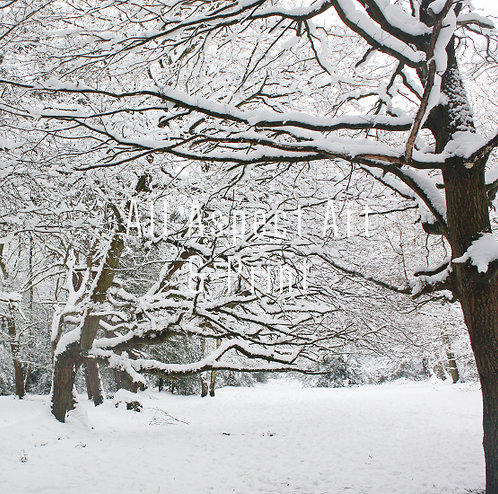 'Winter in the Park' #1 - Christmas Card