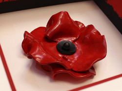 Ceramic Poppy in white box frame