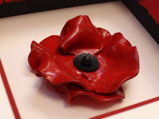 Ceramic Poppy Framing