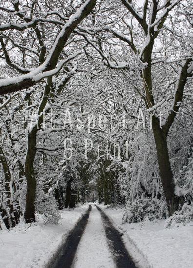 'Snowy Hobbs Hole' - Christmas Card