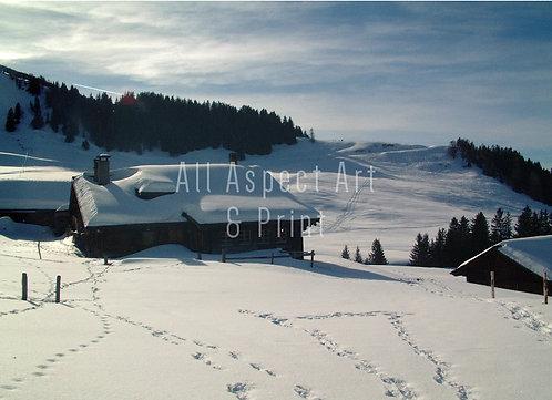 'Winter Wonderland' - Christmas Card