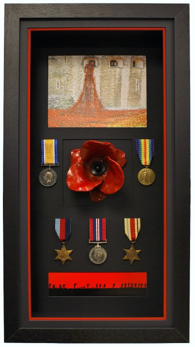Poppy and Medals Combination DisplayPoppy Combination Box Display