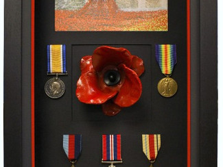 Frame My Poppy: Bespoke Displays