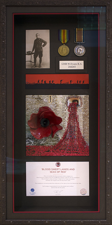 Poppy/Medals Combination Box Frame