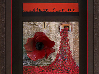 Ceramic Poppy - Combination Display