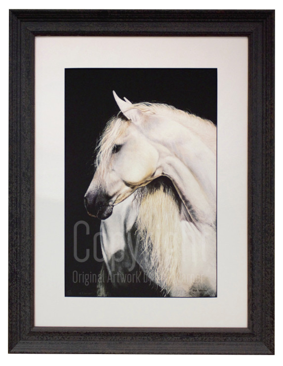 Sue Warner Grace, Oil painting of white horse