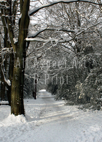 'Winter in the Park' - A3 Poster Print