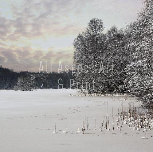 'Walking on Thin Ice' - Christmas Card