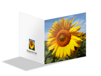 Print My Cards: Greetings Cards