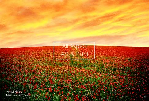 'Poppy Hillside' - Neil Finnemore Print