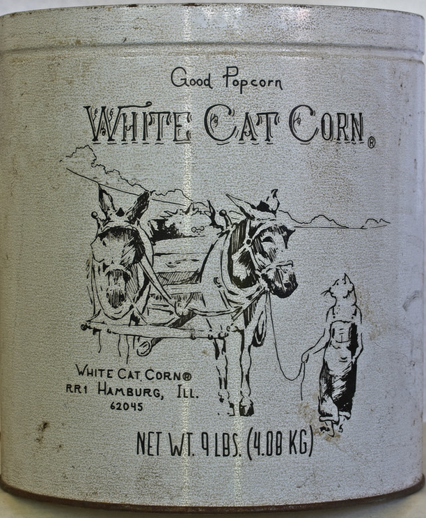 WHITE CAT POPCORN.jpg