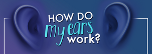 How do my ears work infographic title