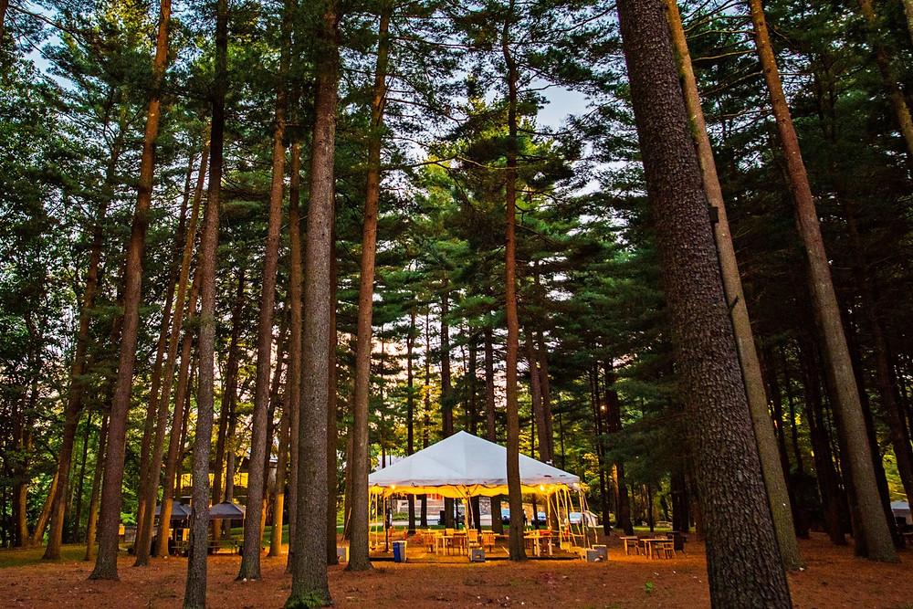 Bridgewater forest tent
