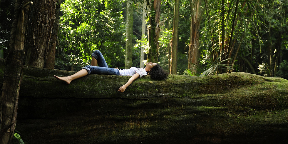 Forest Bathing: Deep Dive