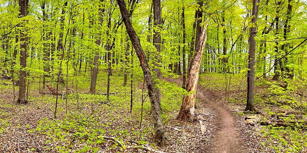 Wood-Rill SNA w/Minnetonka Comm. Ed.