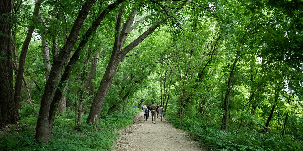 Forest Bathing Walk - May 2